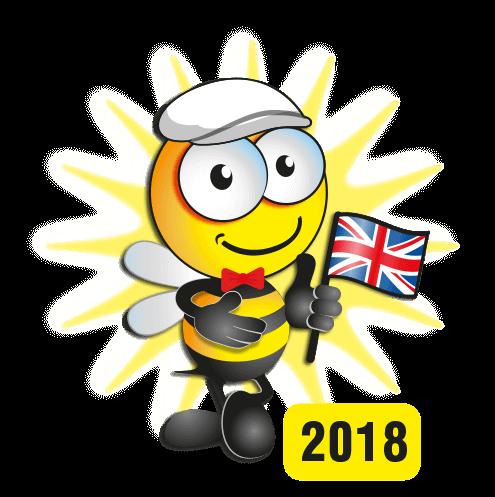 T-Cut Bee 2018